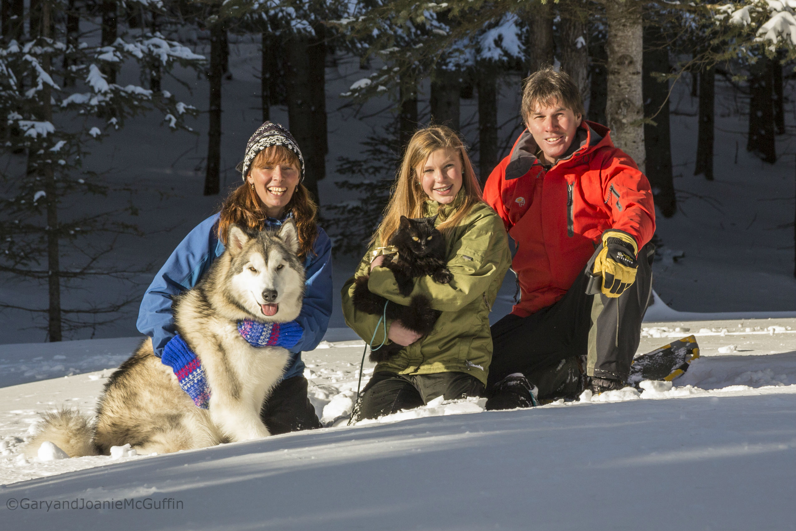 Winter family photo of two parents, daughter, a cat and a dog sitting in snow