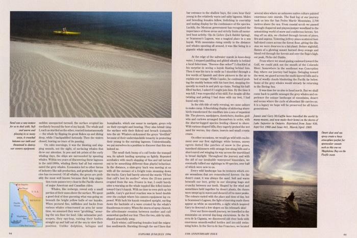 Explore Magazine Baja Storypg94-95