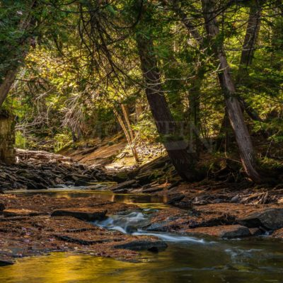 Creek in eastern Algonquin Park